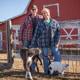 Lamb Farmers